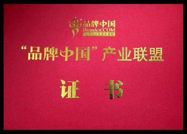 中國卓越品牌風云榜