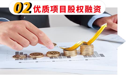 02优质项目股权融资