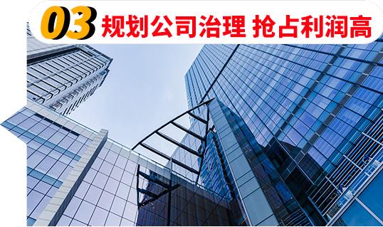 03规划公司治理抢占利润高